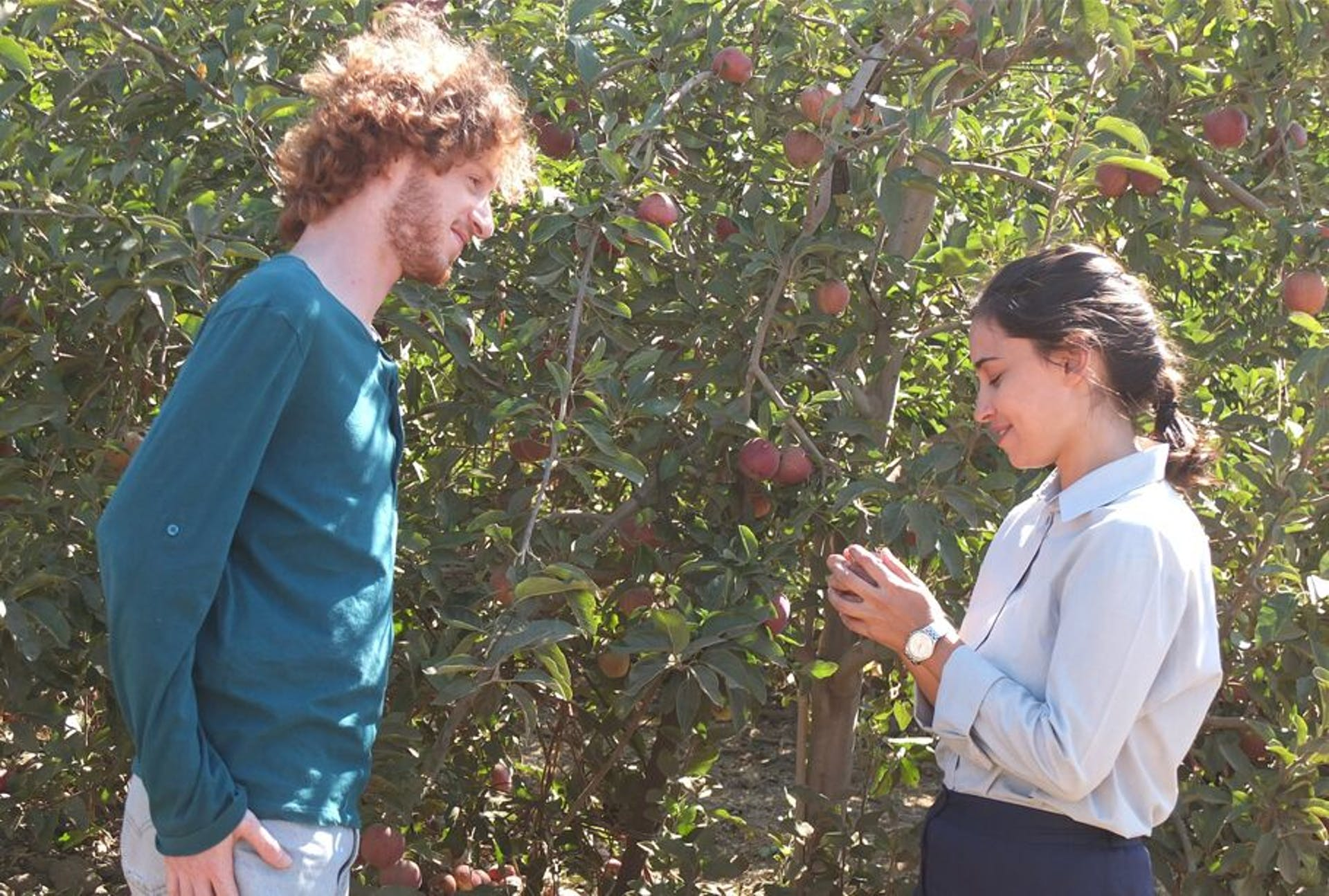 Apples From the Desert (Tapuhim Min Hamidbar)
